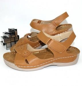 601-brown