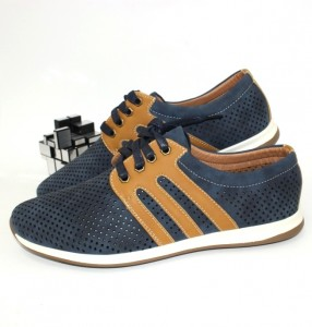 650-1-blue-brown