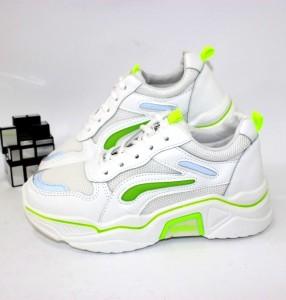 C09-white-green